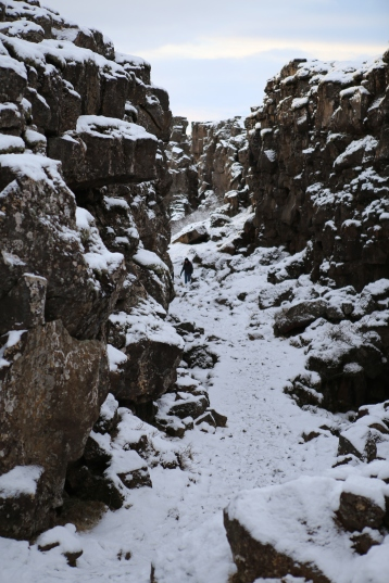 The North American and Eurasian tectonic plates meet in Thingvellir, where they're visible to visitors walking through the Thingvellir National Park.